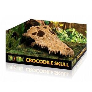 Exo Terra Krokodillenschedel