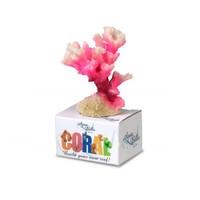 Coral Cauliflower pink