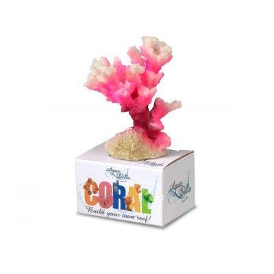 Aqua Della Coral Cauliflower pink S