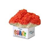 Aqua Della Coral Reef Module Cup Oranje M