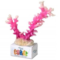 Coral Staghorn pink