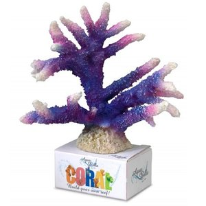 Coral Staghorn purple