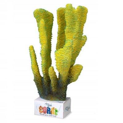 Aqua Della Coral Reef Module Pilar XL