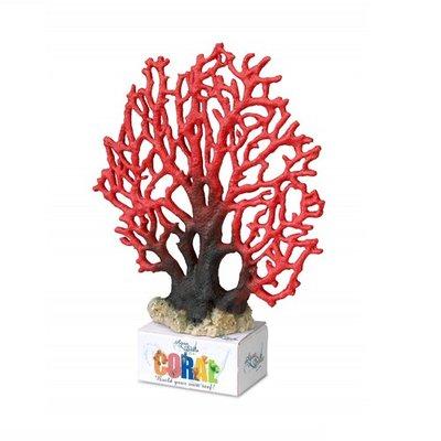 Aqua Della Coral Lace XL