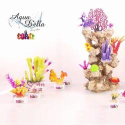 Aqua Della Coral Reef