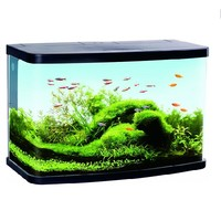 Duvo+ Aquarium Panorama LED VS60 61 x 30 cm