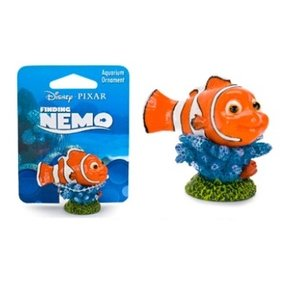 Finding Nemo on Coral