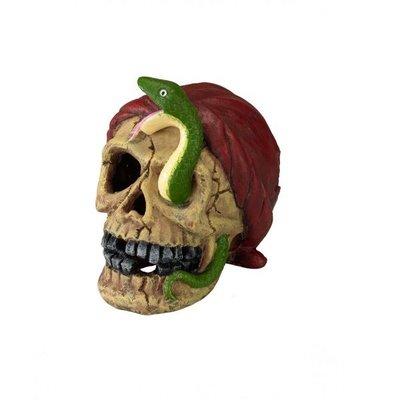 Aqua Della Pirate Skull Snake Eye