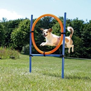 Trixie Agility Training Hond Ring