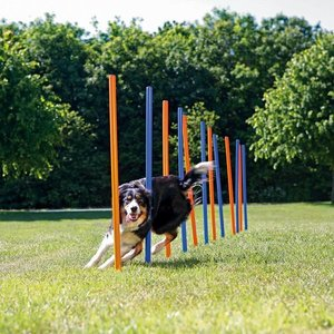 Trixie Agility Training Hond Slalom
