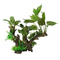 Decoratie met Plant