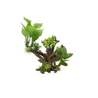 Aqua Della Flora Scape 4