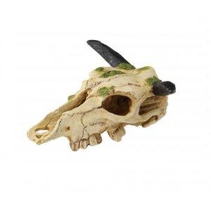 Aqua Della Aquarium Decoratie Skull Caraboo S