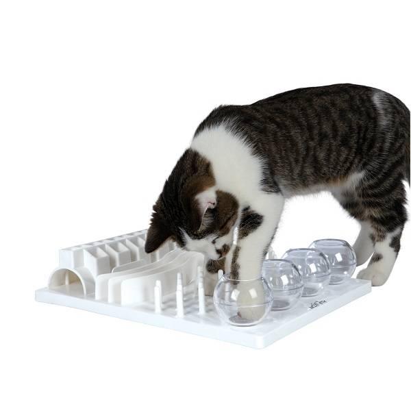 Kattenspeeltje Denkspeelgoed Kat Fun Board