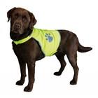 Trixie Veiligheidsvest voor honden