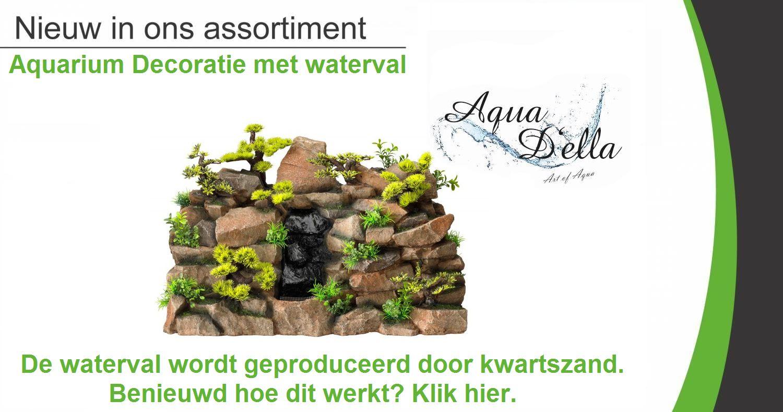 Aqua Della Waterval