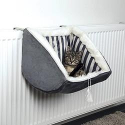 Hangmat Kat