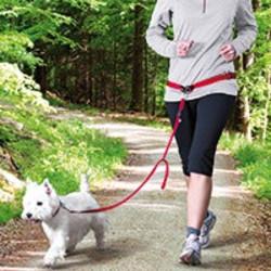 Jogginglijn Hond