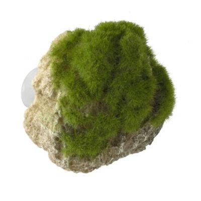 Aqua Della Moss Stone met Zuignap S