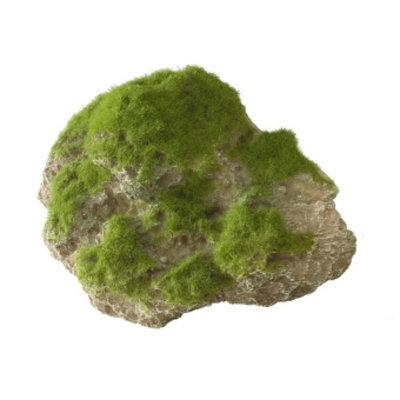 Aqua Della Moss Stone met Zuignap M