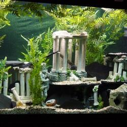 Aquarium Decoratie Ruïnes