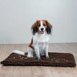 Droogloopmat Hond