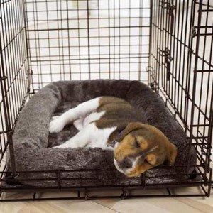 Bench kussens Hond