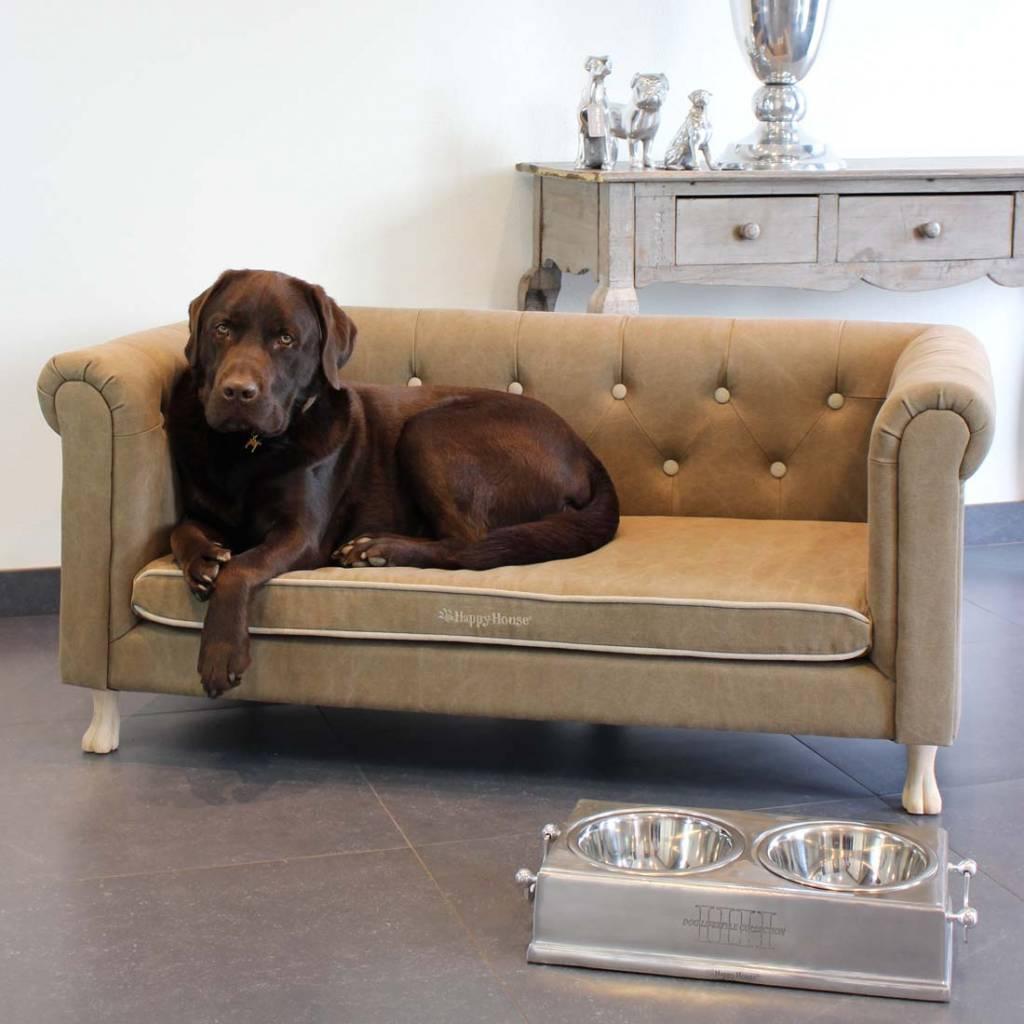 Design Hondenbanken