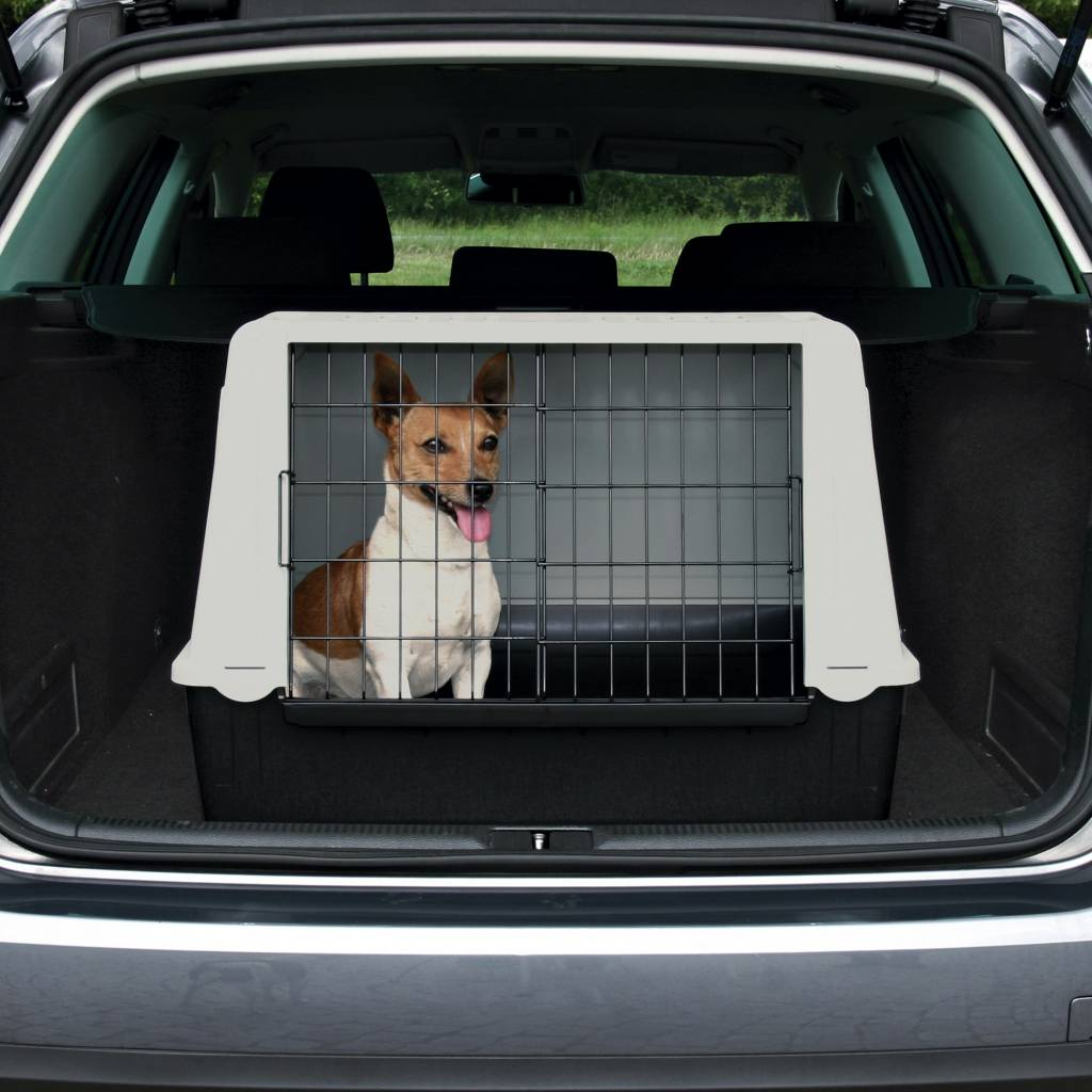Auto box hond