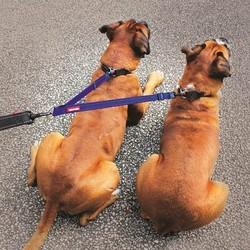 Koppelstuk voor Hondenriem