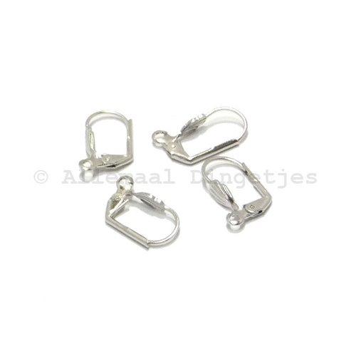 Oorhaakjes gesloten zilverkleurig (2 paar)