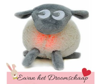 Ewan Droomschaap