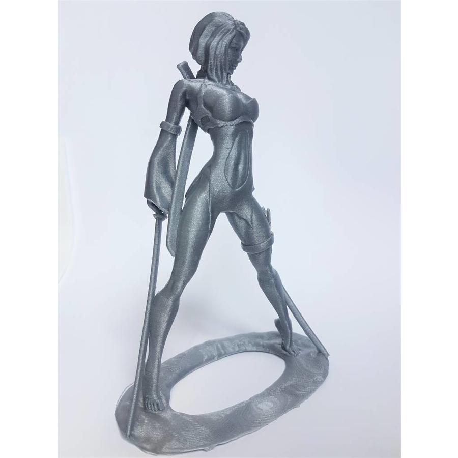 PLA Rapunzel Silver / Zilver, 1.75 / 2.85 mm, 750 grams (0.75 KG)-3