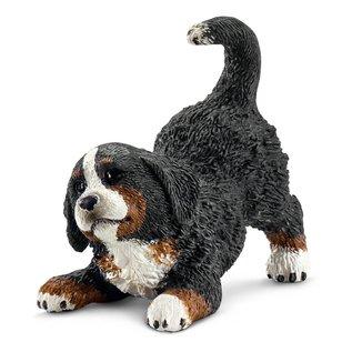 Berner Sennenhond welp - 16398