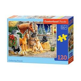 Castorland puzzels PUB13340-1 - Vrienden verzamelen 120 stukjes