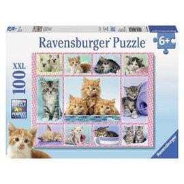 Ravensburger PU105304 - Kittens 100 stukjes