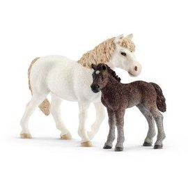 Pony en veulen - 42423