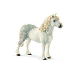 Schleich Welsh Pony, hengst - 13871