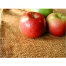 Voedselallergietest 181