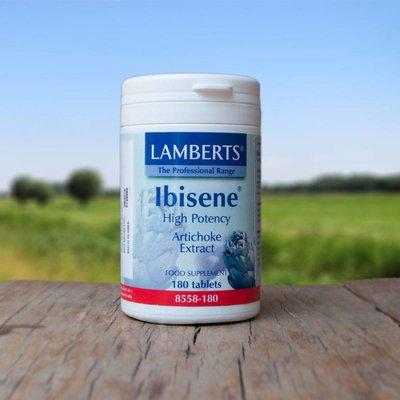 Lamberts Ibisene