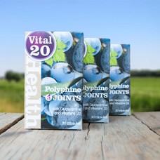 Vital 20 Polyphine JOINTS  3 stuks