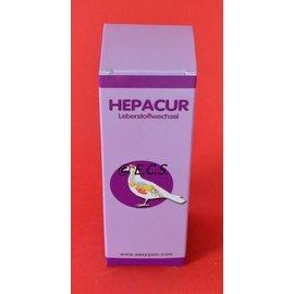 Hepacur 100ml Easyyem