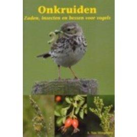 Buchen Weeds, Beeren und Insekten (Alois von Mingeroet)
