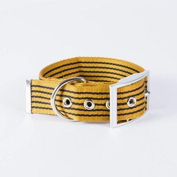 Canvasco Urban Dogs Halsband 'Frida' Cognac 40mm