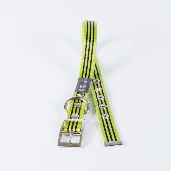 Canvasco Urban Dogs Halsband 'Frida' Groen 25mm