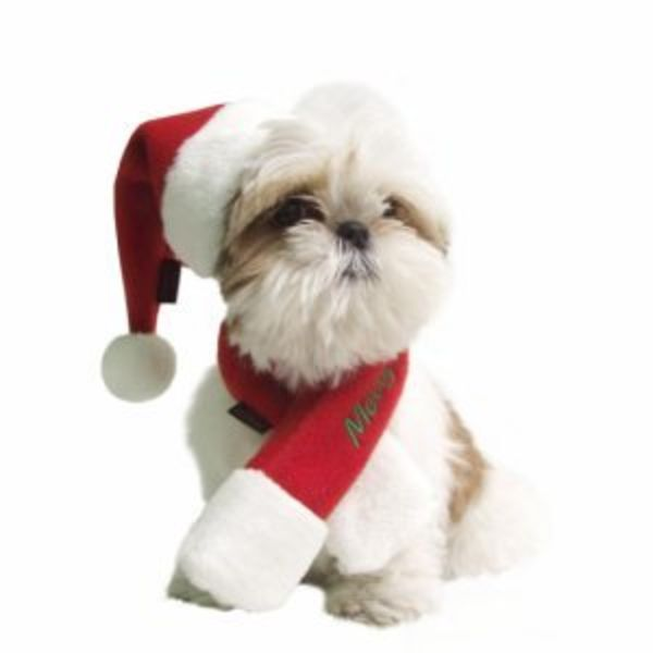 Honden Kerst Shawl Rood