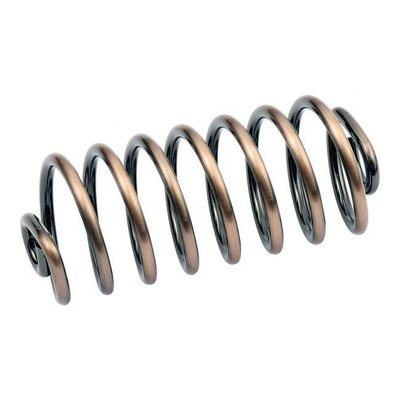 """5"""" Brass Spring Solo Seat"""