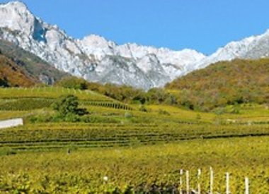 Trentino / Alto Adige
