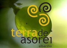 Terra de Asorei