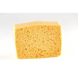 Sponge Painting Large